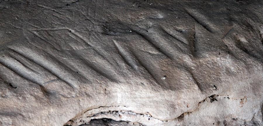 Yaminba Sandstone Caves - PilligaNR091114 (10)