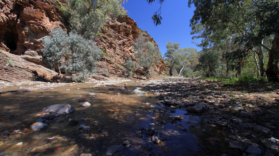 The first of many creek crossings in Brachina Gorge.