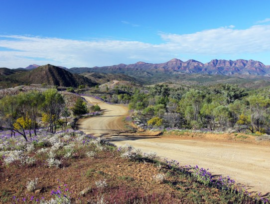 Ikara-Flinders Ranges National Park.