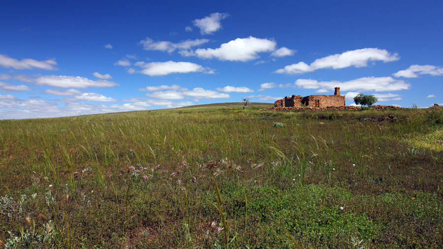 Homestead ruins north of Cradock 250916 (11)